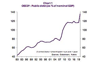 See full story: What Accounts for the Sharp Rise in the Public Debt Ratio in OECD Countries?: Natixis
